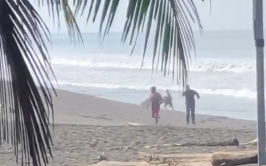 """Why Are Surfers Getting Shot At By Police In Costa Rica?"" by Zander Morton via Surfer Mag"