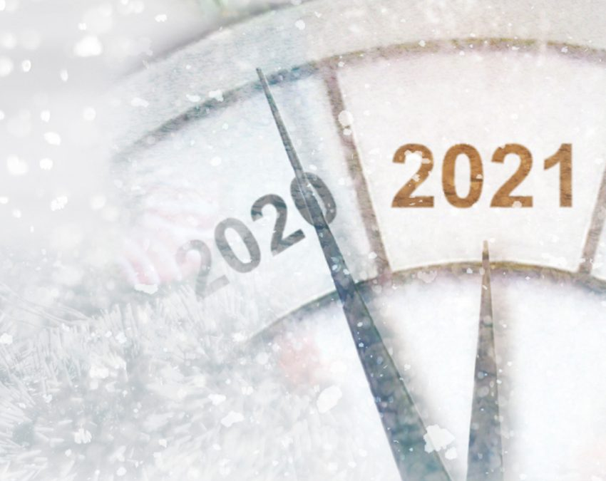 """""""Ten Leadership Lessons from 2020"""" By Deborah Patton via The Robin Report"""
